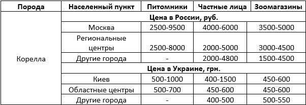 Стоимость попугая корелла