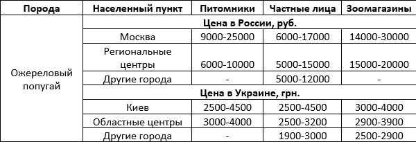 Стоимость ожерелового попугая
