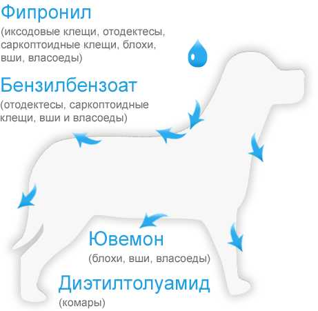 Капли на холку БлохНэт для кошек и собак