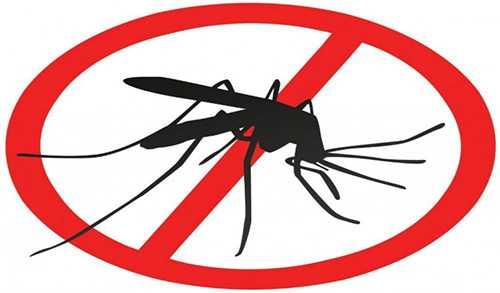 Чем лучше мазать укусы комаров у детей
