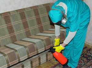 Средство от клопов Палач эффективно избавляемся от паразитов