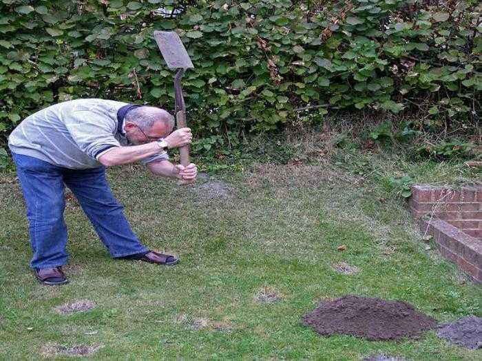 Как избавиться от кротов на огороде Средства борьбы с кротами на огороде
