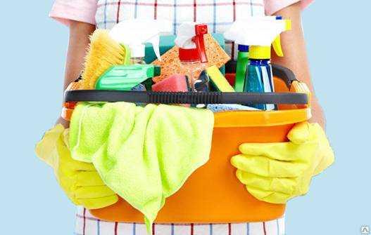 Средства против клопов чем обработать квартиру, чтобы вытравить кровососов раз и навсегда