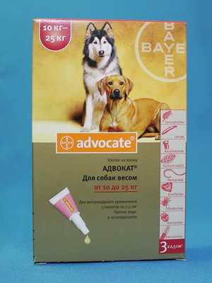 Как правильно использовать капли Адвокат для собак
