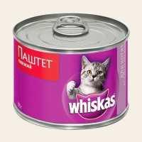Подкожный клещ у котов и кошек распознать, устранить, предупредить