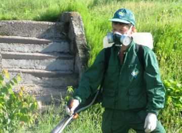 Как использовать инсектицид Каратэ в соответствии с инструкцией