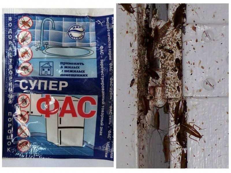 Средства ФАС от тараканов таблетки, гель и порошок