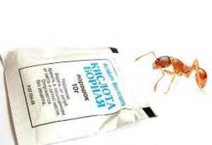 Как избавиться от непрошеных гостей домашние рыжие муравьи