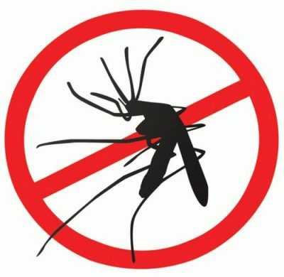 Выбор средства от комаров