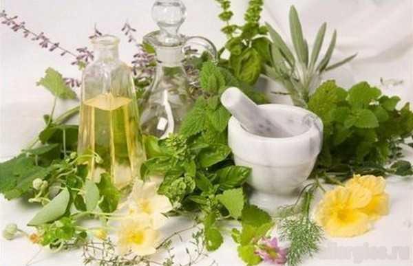Укус насекомого, опухоль и покраснение лечение. Фото