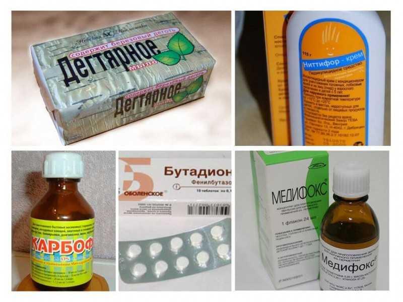 Приказ 26 ноября 1998 г. N 342 об усилении мероприятий по профилактике эпидемического сыпного тифа и борьбе с педикулезом стр. 1