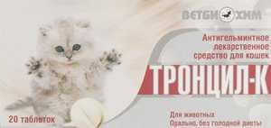 Таблетки от глистов для кошек. В каких случаях их приём необходим