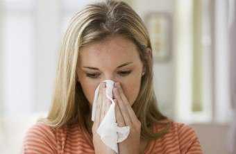 Пылевые клещи