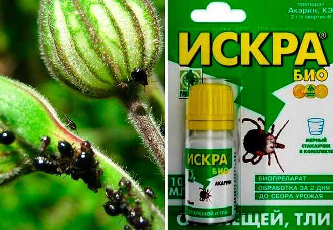 Инсектицид Искра Двойной Эффект