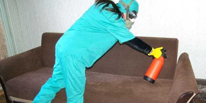 Средства и методы борьбы с бельевыми клопами