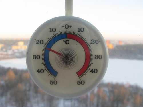 При какой температуре гибнут постельные клопы