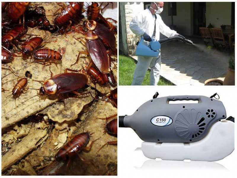 Как избавится от тараканов в квартире с помощью тумана И можно ли ним уничтожить всех особей