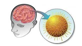 Клещевой энцефалит симптомы, лечение. Профилактика клещевого энцефалита