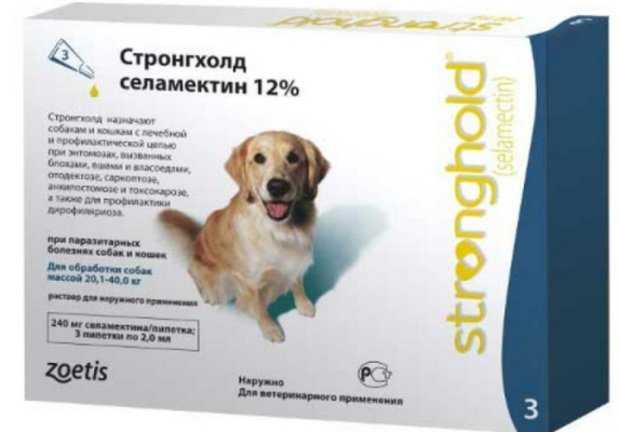 Капли на холку Стронгхолд как использовать для собак
