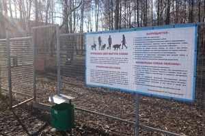 В РФ предусмотрен штраф за выгул собак в неположенных местах и с нарушениями