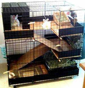 Многоэтажная клетка для кроликов и грызунов - это удобно