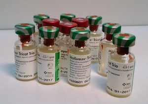 Вакцина Нобивак для кошек