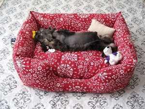 Из чего сделать домик для собаки