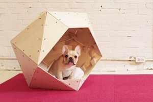 Как построить домик дляя собаки
