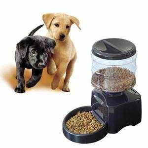 Автокормушка для собаки - как выбрать