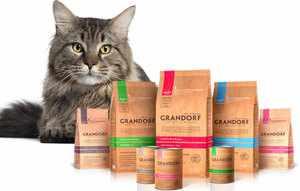 В чем особенность корма для кошек