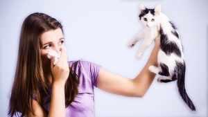 Аллергия причины симптомы