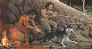 Приручение собак