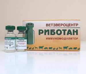 Применение препарата Риботана для собак