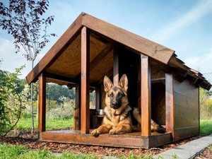 Как сделать будку для пса своими руками