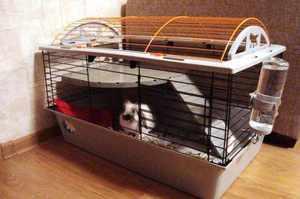 Клетка с барабаном для домашних декоративных кроликов