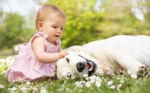 Какую собаку выбрать для ребенка