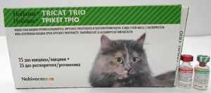 Вакцина Нобивак (nobivac) для кошек