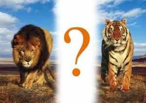 Как сравнить силы животных