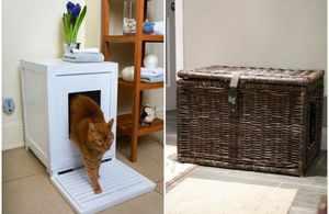 Места для кошачьего туалета