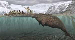 Охота людей на морских коров