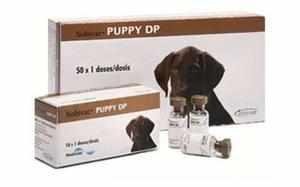 Препарат Нобивак для щенков (Puppy DP)