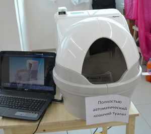 Автоматический кошачий туалет