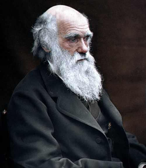 Чарльз Дарвин ел сов? Давайте разбираться