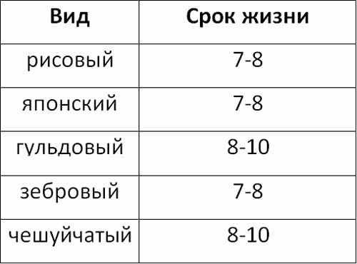 Таблица продолжительности жизни